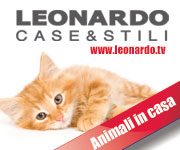 box_leo_animali_in_casa