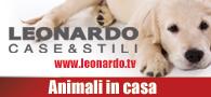 manchette_leo_animali_in_casa